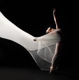 Tancerz baletowy - 66019440