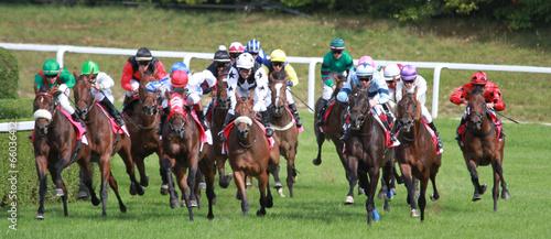 Foto course de chevaux