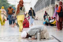 Praying Pilgrim In Amritsar