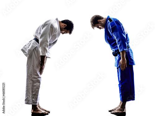 Garden Poster Martial arts judokas fighters fighting men silhouette