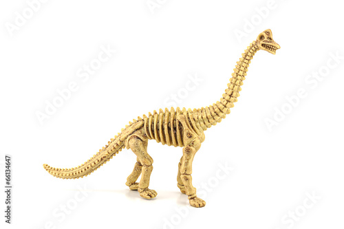 Photo  Apatosaurus fossil skeleton toy isolated on white.