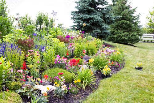 Colorful landscaped celosia flower garden Fototapeta