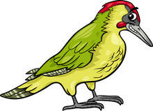 Yaffle Bird Animal Cartoon Illustration