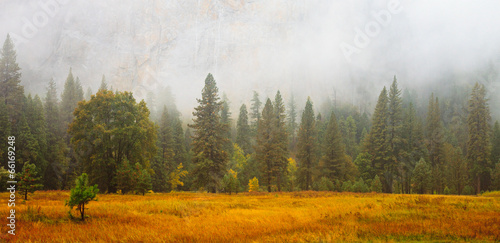 Yosemite Valley Scene with Fog Poster