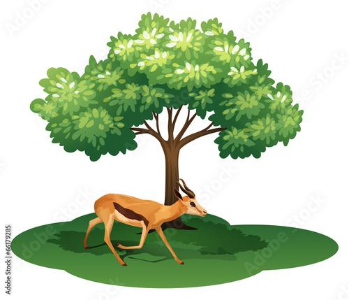 A deer under the tree Wall mural