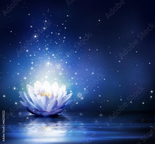 Papiers peints Eau magic flower on water - blue