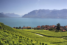 View Over Lake Geneva From The...