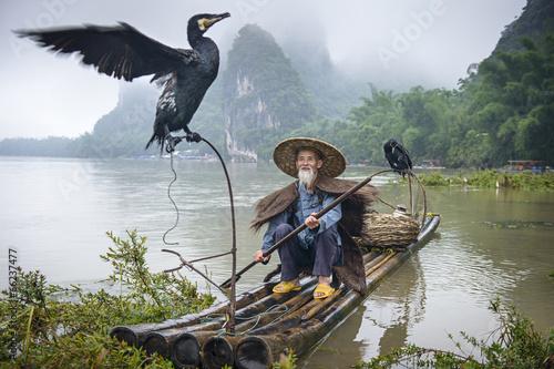Fotografie, Obraz  Cormorant Fisherman