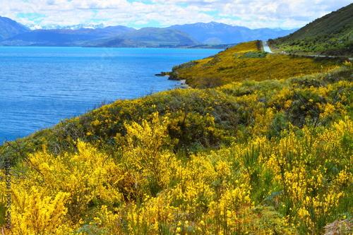 Photo  Beautiful lake