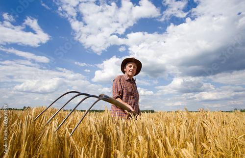 Fotografie, Obraz  Working in barley field