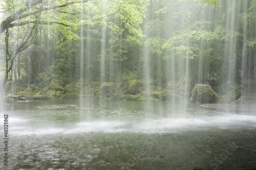 鍋ヶ滝の落水と緑