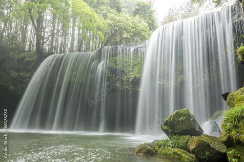 Foto op Canvas Watervallen 緑の中の鍋ヶ滝