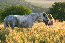 Beautiful Girl And Horse Outdo...