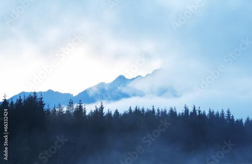 Aluminium Prints mountain silhouette in morning fog