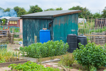 Allotment Shed With Compost Bi...