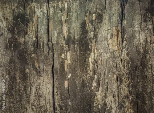 Photo  Old Wooden BG