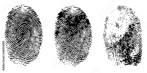 different black fingerprints, vector Tablou Canvas