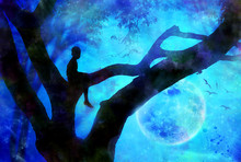 Boy In Tree At Night With Moon