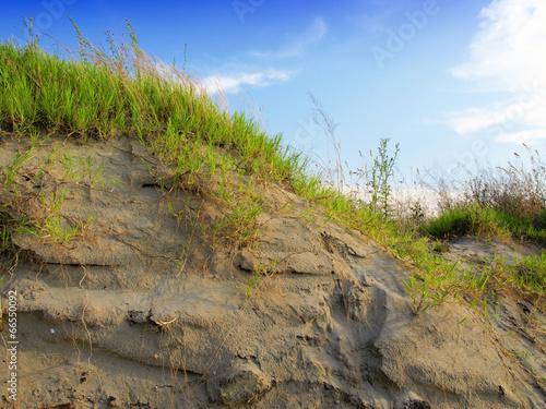 Cadres-photo bureau La Mer du Nord Dunes with Beachgrass