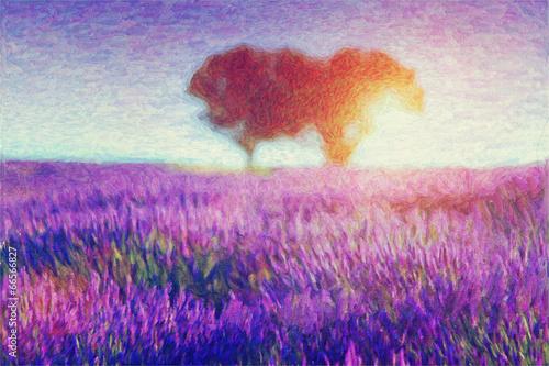 malowanie-pol-lawendy