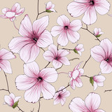 flower blossom illustration