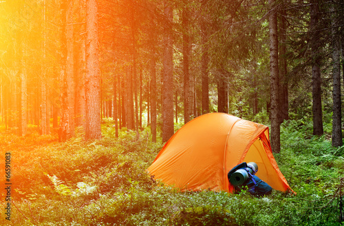 Spoed Foto op Canvas Kamperen Camping in the Forest