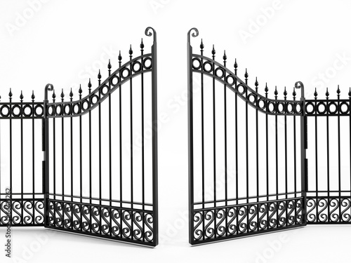 Fotografie, Obraz Black iron gate