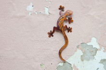 Rusty Metal Gecko Hanging On A...