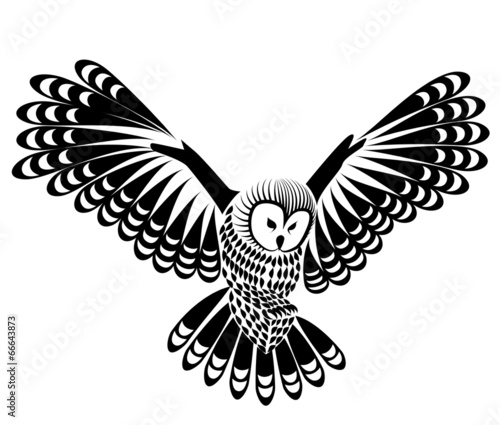 Canvas Prints Owls cartoon owl bird vector for mascot or tattoo design or idea of logo