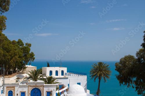 Staande foto Tunesië Сиди бу Саид