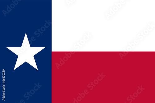 Valokuvatapetti Flag of Texas
