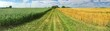 canvas print picture - Feldweg Panorama