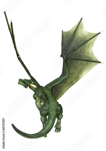 Cadres-photo bureau Dragons green dragon just flying back view