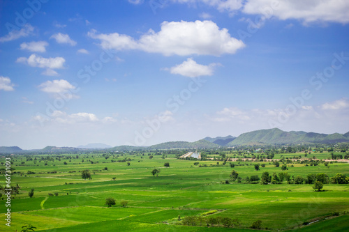 Fotobehang Rijstvelden Natural rice field and blue sky at the rural of Thailand.