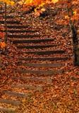 Herbstaufgang