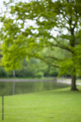 Foto op Aluminium Tuin Photo of a pond and trees
