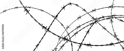 Barbed wire Tablou Canvas