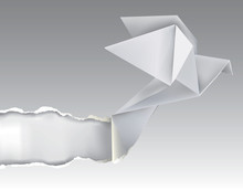 Origami Bird Ripping White Paper