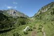 Vallée de la camisette,Pyrénes ariégeoises