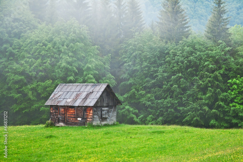 Fotomural old cabin