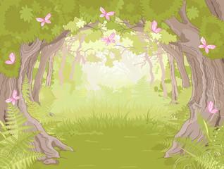 fototapeta polana w magicznym lesie