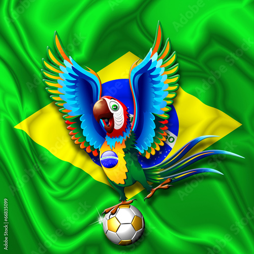Brazil Macaw Parrot with Soccer Ball
