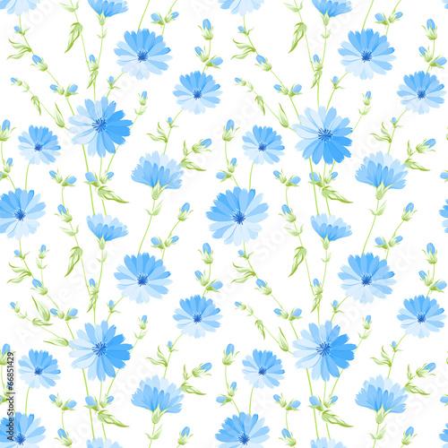 Chicory seamless pattern.