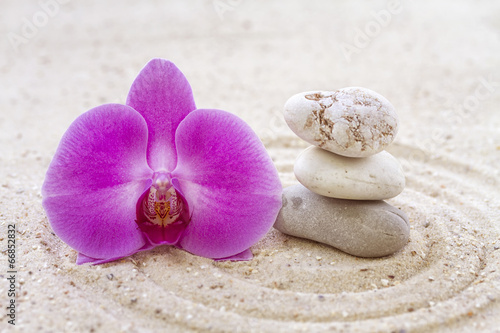 Foto op Plexiglas Stenen in het Zand Orchid with zen stones in the sand