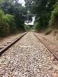 Country Rail Road Tracks