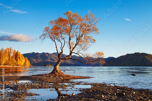 Fototapeta Lake Wanaka, Nowa Zelandia