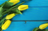 Fototapeta Kwiaty - żółte tulipany