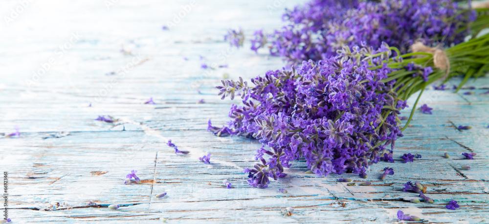 Fototapety, obrazy: Fresh lavender on wood