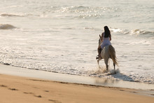 Young Lady Horse Ride On Beach