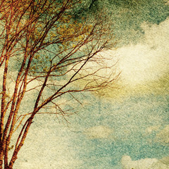 Fototapeta Niebo Grunge vintage nature background